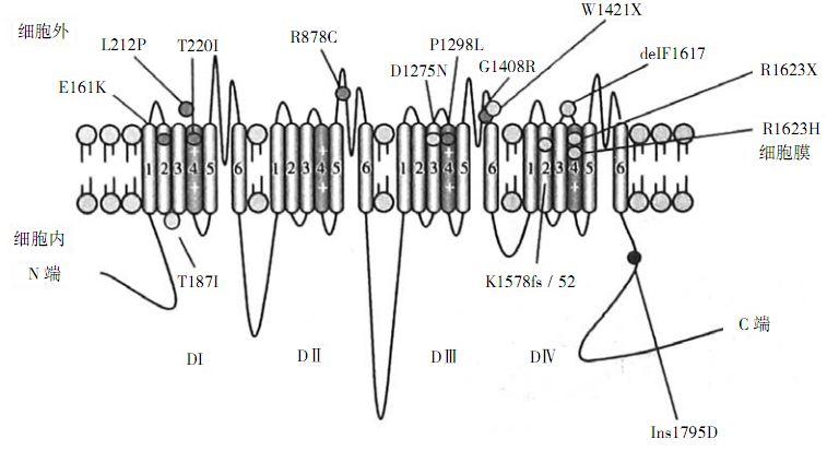 电路 电路图 电子 设计图 原理图 757_413